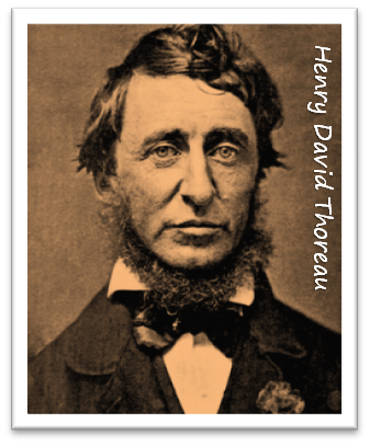 Thoreau Self Publishing package